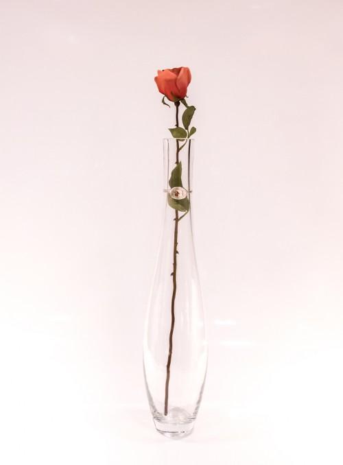 Trandafir decorativ