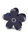 Cleste Negru Floare